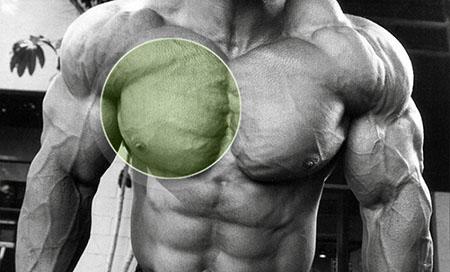 Изолирующие упражнения для тренировки груди